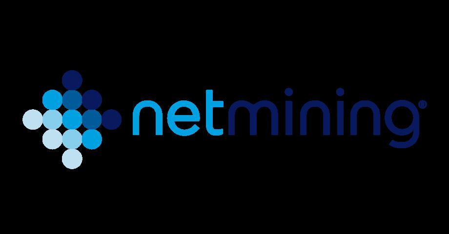 Netmining Company Logo